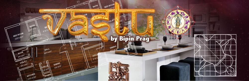 Vastu by Bipin Prag